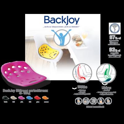 BackJoy SitSmart Mini gerinctámasz gyermek kék 1x